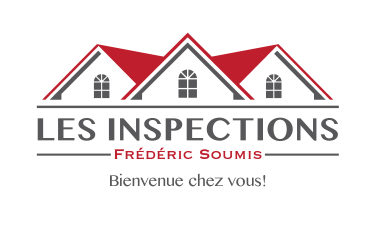 fs-inspection-web-01